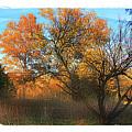 Autumn At Bull Run by Margie Wildblood