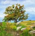 Autumn At Gettysburg by Deborah Butts