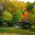 Autumn At Lafayette Park Bridge Landscape by Debbie Fenelon