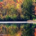 Autumn At Laurel Lake by Angela Davies