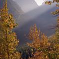 Autumn At Logan Pass by Richard Rizzo