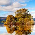 Autumn At Milarrochy Bay by Richard Burdon