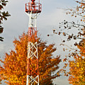 Autumn At The Airport Light Tower by Douglas Barnett