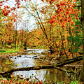 Autumn At The Creek by William Norton
