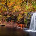 Autumn At Wolf Creek Falls by Rikk Flohr