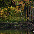 Autumn At Wrights Pond by Karol Livote