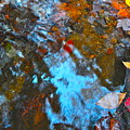 Autumn B 2015 132 by George Ramos