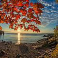 Autumn Bay Near Shovel Point by Rikk Flohr