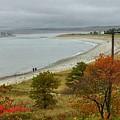 Autumn Beachcombers  by Patricia E Sundik
