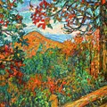 Autumn Beauty From Sharp Top by Kendall Kessler