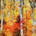 Autumn Birches by Dragica Micki Fortuna