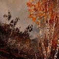 Autumn Birches  by Pol Ledent