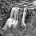 Autumn Blackwater Falls Bw by Steve Harrington