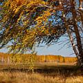 Autumn Breeze by Victor Kovchin