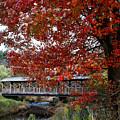 Autumn Bridge by Eileen Marie Ardillo