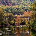 Autumn Bridge by Ronda Ryan