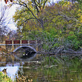 Autumn Bridge by Tommy Anderson