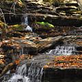 Autumn Brook by Diane E Berry
