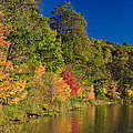 Autumn Color Trees Along Beauty Lake by Panoramic Images