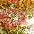 Autumn Colors And Twigs by Lois Mountz