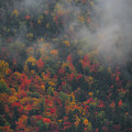 Autumn Colors In The Clouds by Dan Sproul