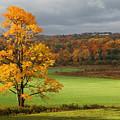Autumn Colors by Robert Och