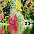 Autumn Colours By The Lake by Colin Rayner