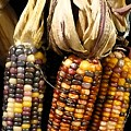 Autumn Corn by Florene Welebny