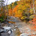 Autumn Creek 3 by Jeelan Clark