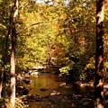 Autumn Creek by Kirby Larpenter