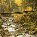 Autumn Crossing by Idaho Scenic Images Linda Lantzy