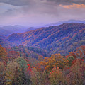 Autumn Deciduous Forest Great Smoky by Tim Fitzharris