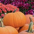 Autumn Decorations by Karin Pinkham