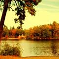 Autumn Dream - Lake Carasaljo by Angie Tirado