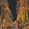 Autumn Drive 2 by Wanda-Lynn Searles