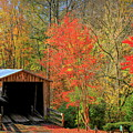 Autumn Elder Mill Covered Bridge by Reid Callaway