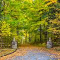 Autumn Entrance 3 by Steve Harrington