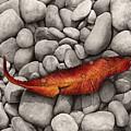 Autumn Epilogue by Hailey E Herrera