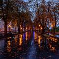 Promenade In Odessa by Viktor Birkus
