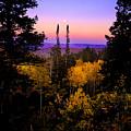 Autumn Evening by Grant Sorenson