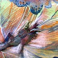 Autumn Fairy by Mindy Newman