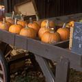 Autumn Farmstand by John Burk