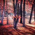 Autumn Firelight by Debra and Dave Vanderlaan