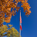 Autumn Flag by Douglas Barnett