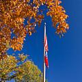 Autumn Flag by Douglas Barnett