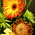 Autumn Flower Arrangement by Nancy Mueller