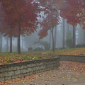 Autumn Fog by Idaho Scenic Images Linda Lantzy