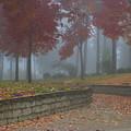 Autumn Fog by Idaho Scenic Images Linda Lantzy