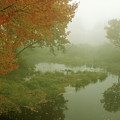 Autumn Fog Millers River by John Burk
