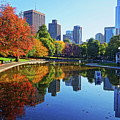 Autumn Foliage On The Boston Common Frog Pond by Toby McGuire